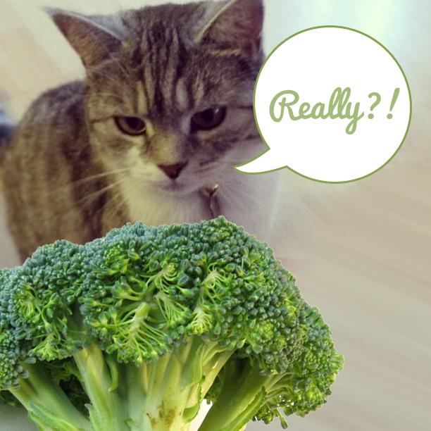 Jess and Broccoli