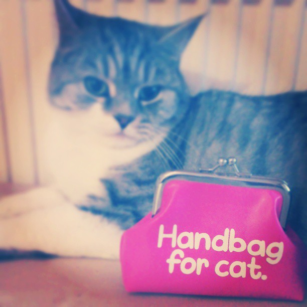 Handbag for Cat