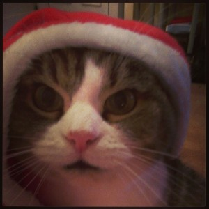 Christmas_marly